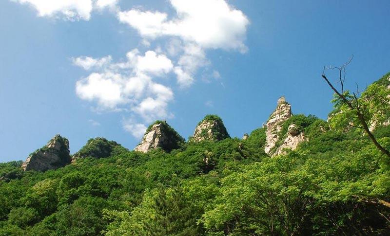 五岳寨我国4A旅游区,景区内山高林密、繁花似锦、群山拱翠、云海波澜且气温湿润凉爽、空气清新,动植物及水资源极为丰富,大小瀑布多达数百个。   幽险的峰谷景观,浓厚的边塞区域特色,使景区成为集旅游观光、健身疗养、避暑度假、寻奇涉幽、登山探险、科学考察为一体的高品位、多功能自然风景区。   五岳寨景区的面积较大,游览路线有内环以及外环之分,内环一般游玩大半天左右即可,外环的话估计一天也玩不完,若所有的景点都要游览完,估计得需要两天的时间了。  大部分游客都会选择游览内环或者只游览部分景点。从景区大门开始,经