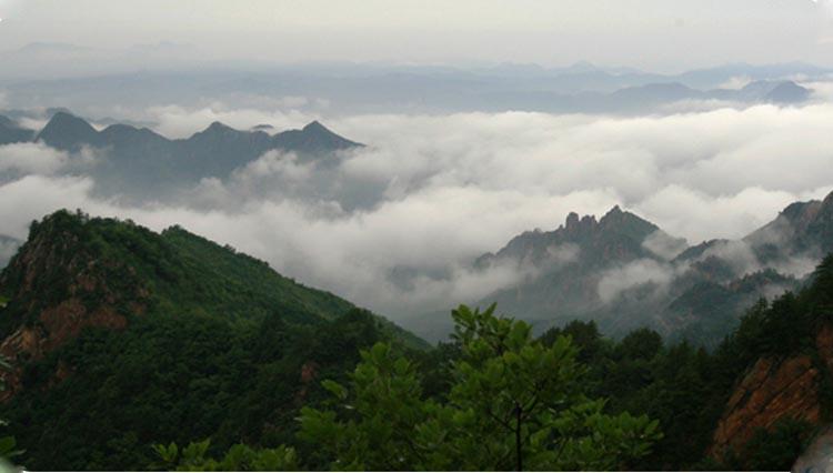 云海,每逢雨后初晴,白草洼因为植被茂盛,海拔较高,总会形成壮观的云