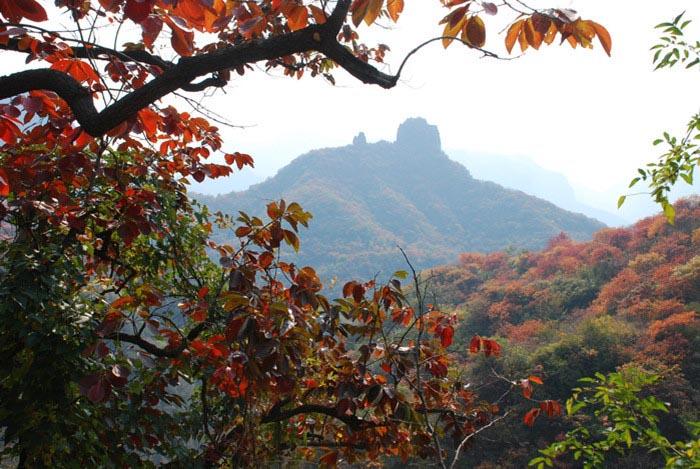 河北天桂山红叶风景区