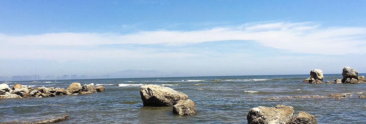 春风十里不如……一起去看海