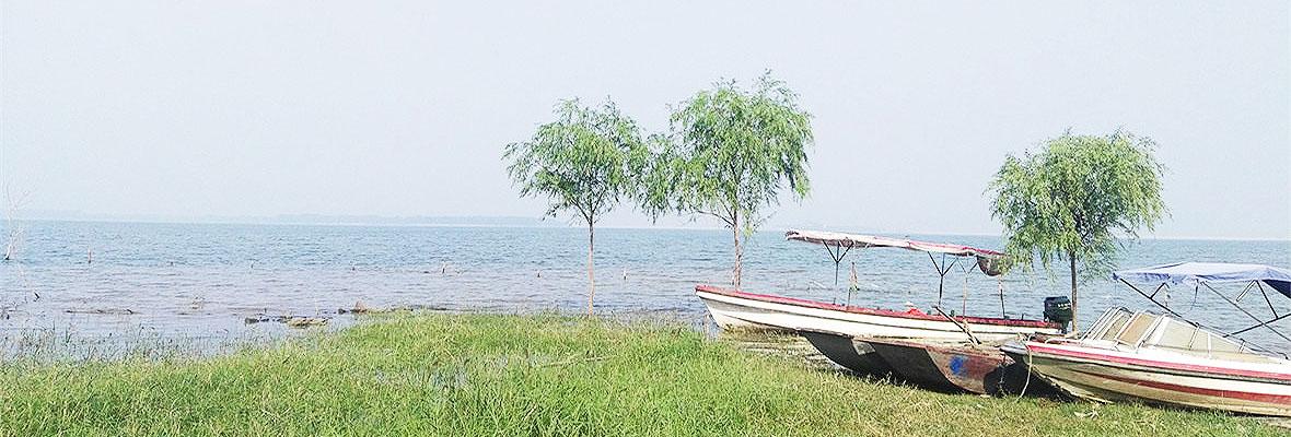龙山蜡像馆、海岸樱源休闲游