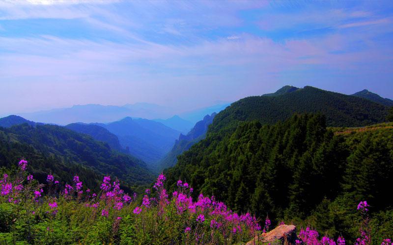 五岳寨一日游——五岳寨风景区-旅游