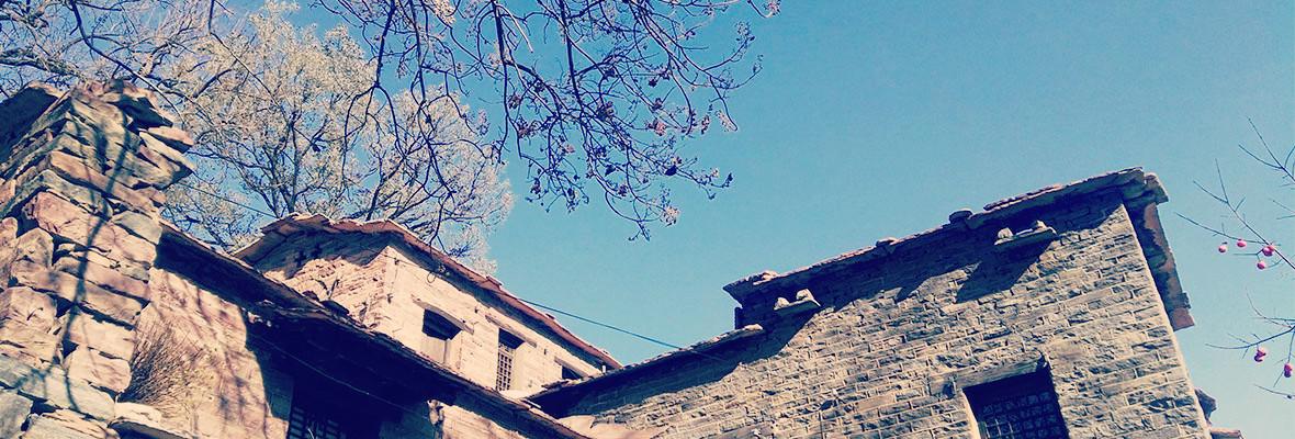 在这个寒冷的冬天,遇见最温情的你——红石英谈村