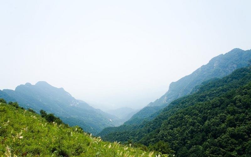 在平山县的西北,与山西接壤,距石家庄140公里,在海拔1045米的深山之中有个小山村,营里乡石槽村。   石槽村四周青山环抱, 溪水从村中穿过四季不断。由于地处海拔较高,即使在炎热的夏季这里也是凉爽如秋。   石槽村村北天牧山景色非常美,站在山顶,远山起伏,宛如大海起伏,时不时身边涌起云雾,随风滑过远近高高低低的山峰。   壮美巍峨,蓝天白云,尤其是路旁小河里,行进的山谷中,山涧里,到处是水溪是水洼。   上山的道路已经筑好,只是还不是特别平整,一路上山几乎是伴着溪水一路前行。   许多时候溪水漫过路面