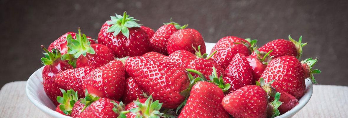 【自驾回顾】好吃好看的草莓,我们来喽~