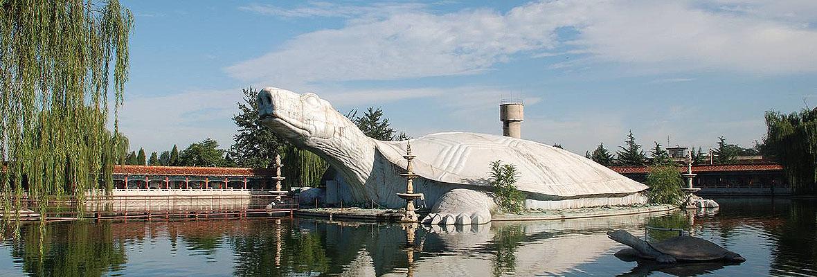 东方巨龟苑一日游